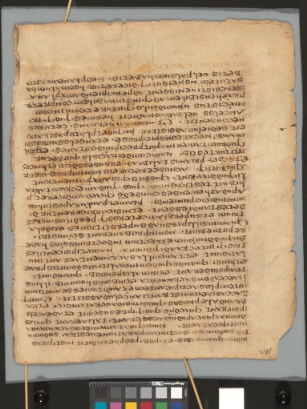 Latin Moses 257